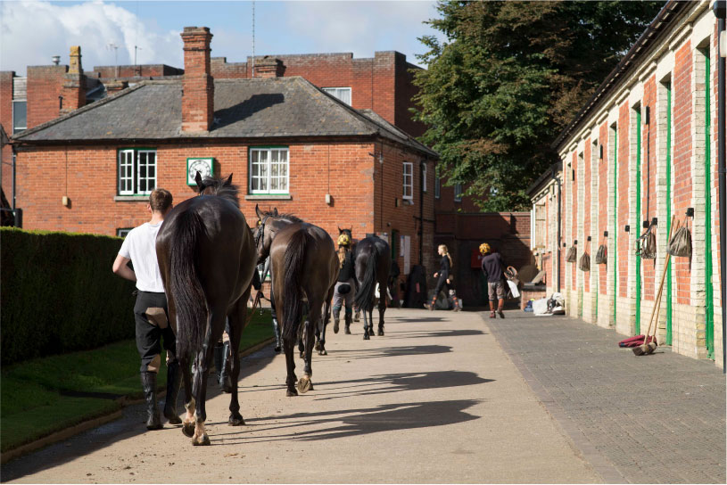 Heath House Training Yard Newmarket